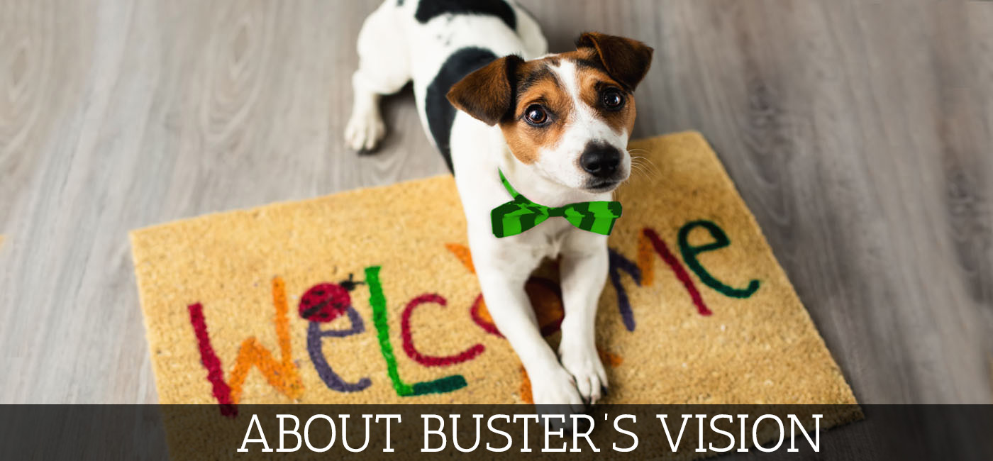 About Buster